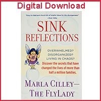 Sink Reflections Audiobook (Digital Download)