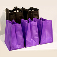FlyLady's Grocery Bag Set